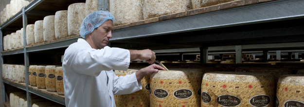 Checking cheese with a bore