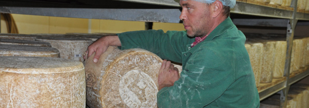 Turning over a round of Laguiole cheese